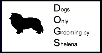 Dogs Only Grooming by Shelena